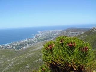 Hermanus-from-the-mountains-